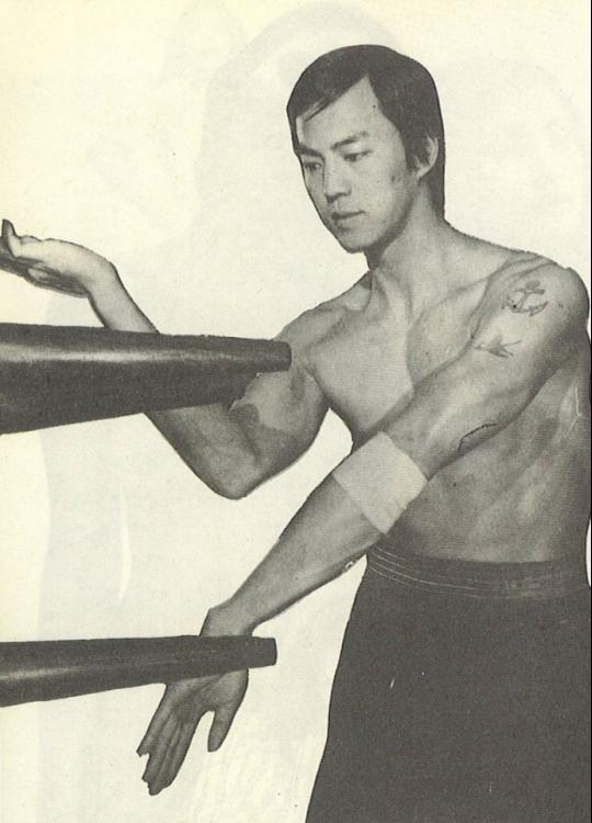 Ti Practicing Wing Chun 1976.png