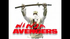 NINJA AVENGERS