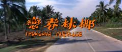 HKID435.jpg